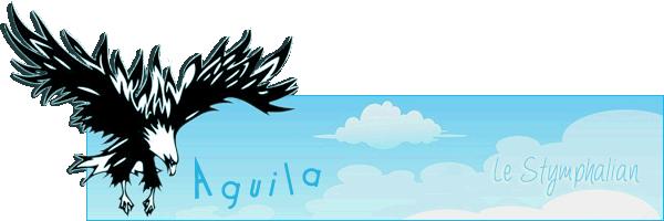Présentation de Tidais Terredasile_Aguila_anniversaire2013_trans